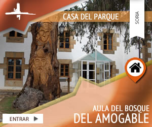 aula-del-bosque-del-amogable