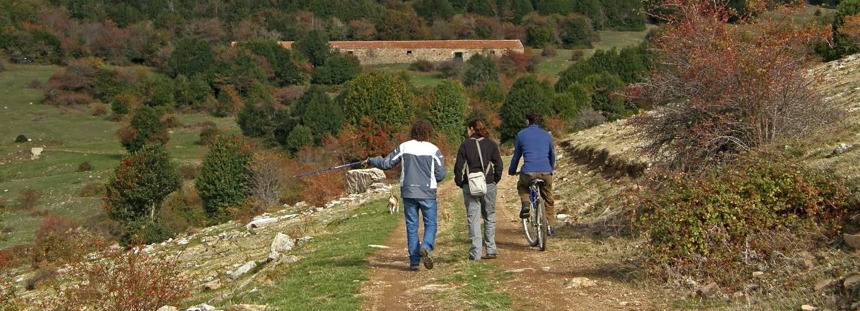 Reserva Natural 'Acebal de Garagüeta'