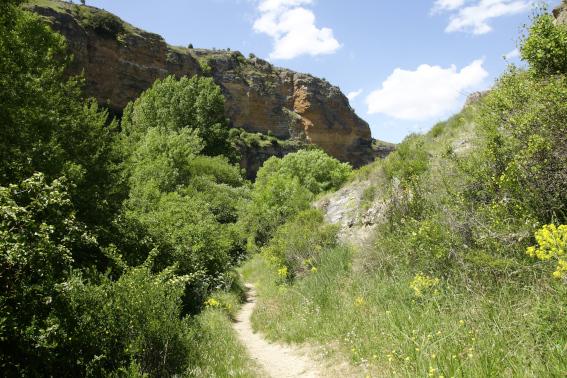 Parque Natural 'Hoces del Duratón'
