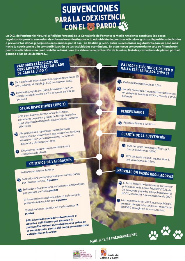 Información subvenciones para la coexistencia con el oso pardo