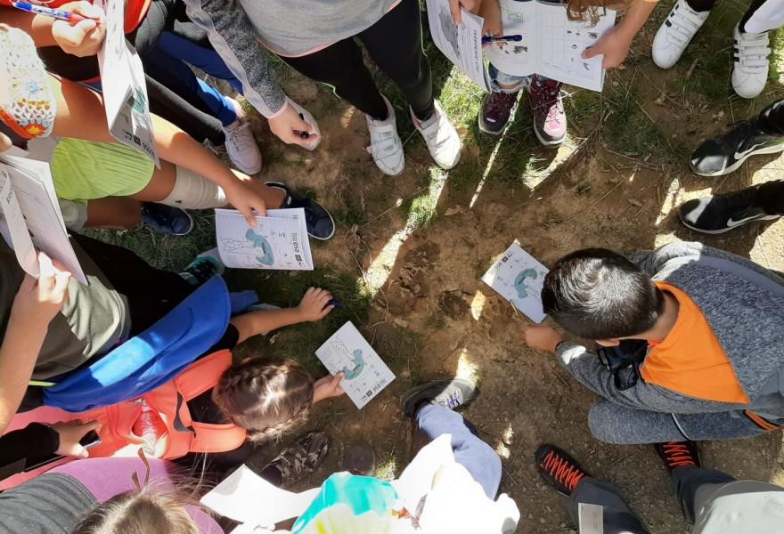 Se convoca la tercera edición de la concesión del sello ambiental 'Centro Educativo Sostenible