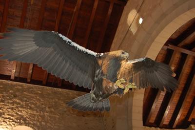 Casa del Parque del Águila Imperial