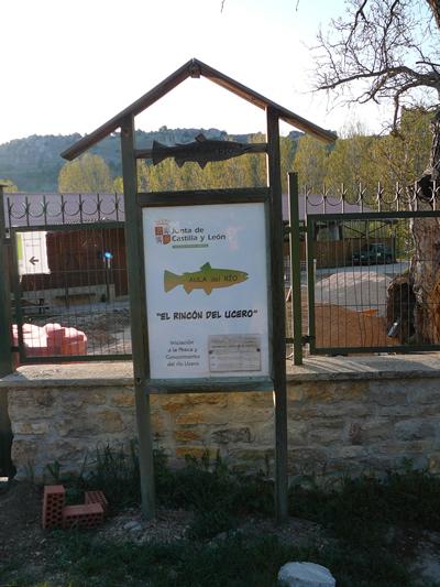 Aula del Río de Ucero. Cartel informativo