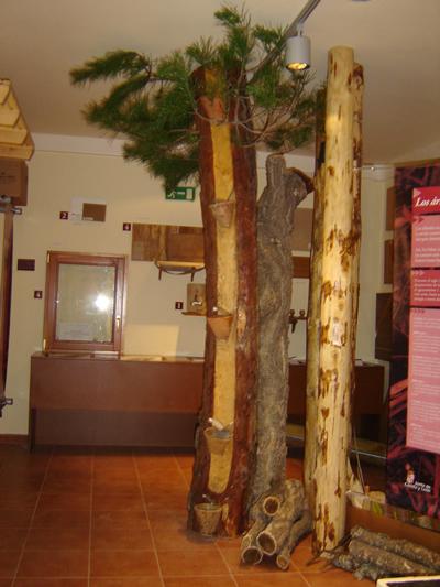 Aula del Bosque del Amogable