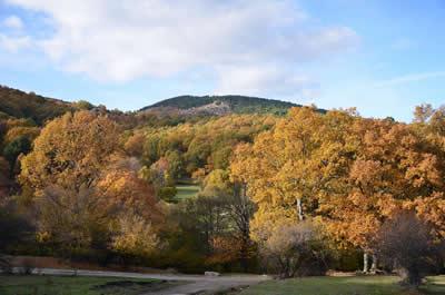 Reserva natural Valle de Iruelas