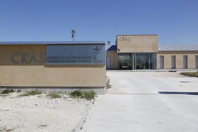El Centro de Recuperación de Animales Silvestres de Burgos recibió un total de 2.188 ejemplares
