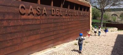 La Casa del Águila Imperial de Pedraza incrementa en un 90% el número de visitas recibidas en el último año