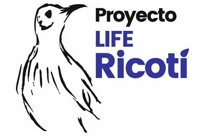 Proyecto Life Conservación de la alondra ricotí y su hábitat en Soria (España)