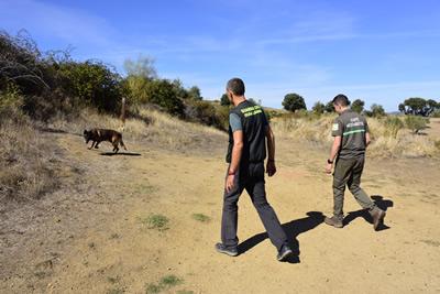 La Guardería Medioambiental de la Junta realiza vigilancia y control del uso ilegal de veneno en la provincia de Zamora