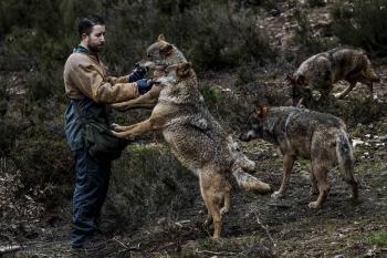 Fotografía de Luis Sevilla/El País
