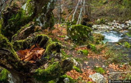 La Fundación Patrimonio Natural y la Ruta del vino Ribera del Duero firman un acuerdo de colaboración en favor de la divulgación de la Naturaleza