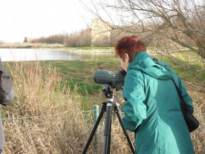 Taller de Iniciación a la Ornitología. Ruta Guiada