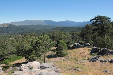 Parque natural Sierra norte de Guadarrama