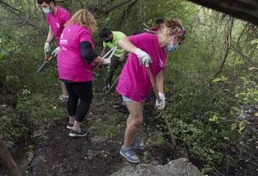 Más de 600 personas han participado en las actividades de voluntariado ambiental en este primer semestre