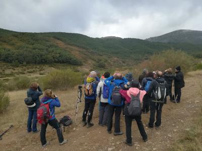 Itinerarios para escuchar la berrea de los ciervos
