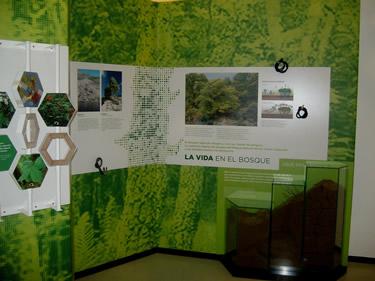 Interior Casa del Parque del Lago de Sanabria y Alrededores (Zamora)