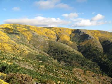 Cerro de la Escusa