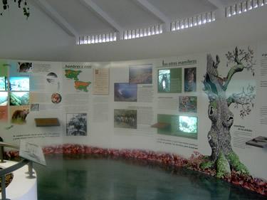 Centro del Urogallo-León