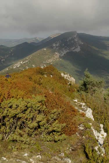 Espacio Natural Montes Obarenes - San Zadornil (Burgos)
