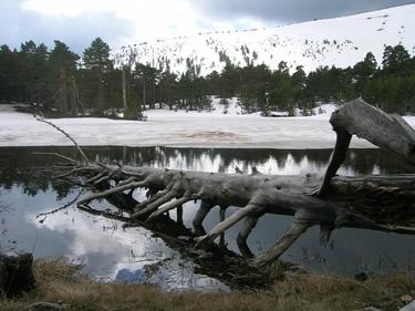 Espacio Natural de las Lagunas Glaciares de Neila - Laguna de los Patos- Burgos