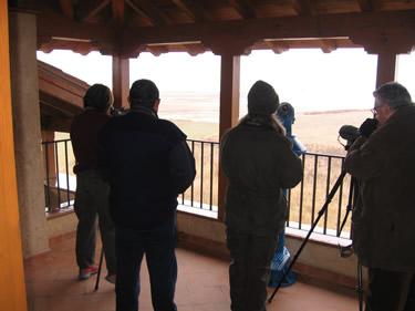 Observatorio de Aves en la  Casa del Parque de Villafáfila - Zamora