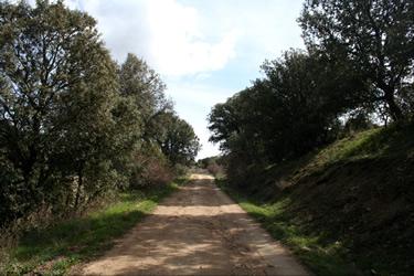 Senda de Orejanilla