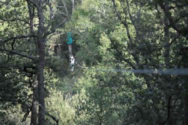 Parque de Aventuras El Robledal del Oso - Cervera