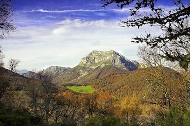 Picos de Europa. Fundación.