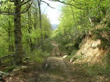 Caminos de la Sonsierra