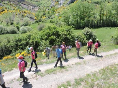Voluntariado Ambiental: Acondicionamiento de un hábitat micológico